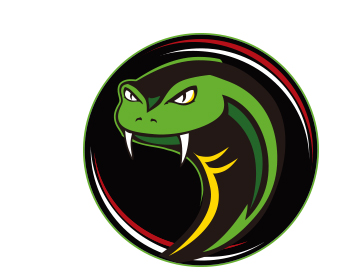 PBA Viper ボウリング