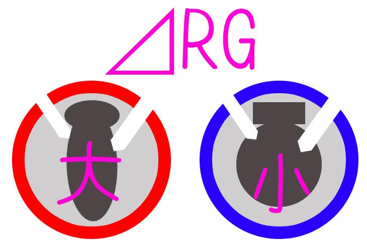 ボウリング ボール デルタRG △RG