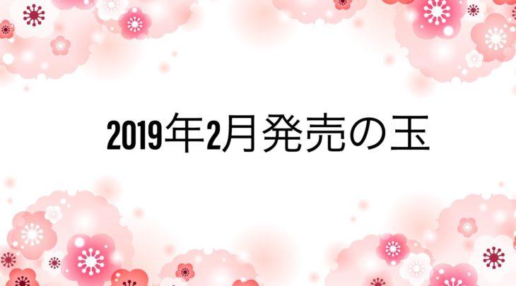 2019年2月 ボウリングボール