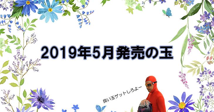 2019年5月 ボウリングボール