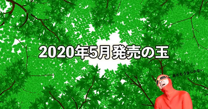 2020年5月 ボウリングボール 新製品