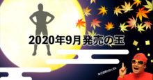2020年9月 ボウリングボール