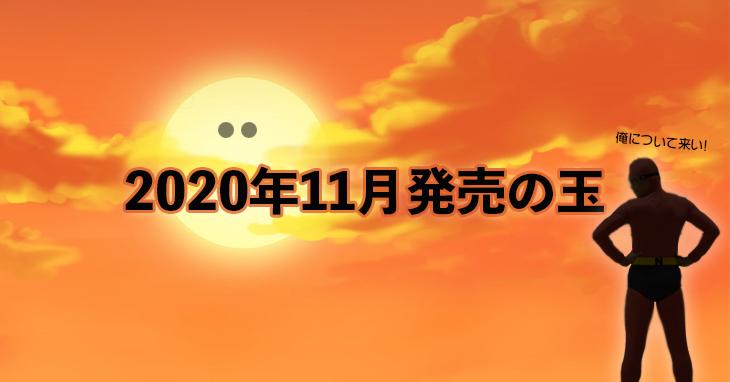 2020年11月 ボウリングボール
