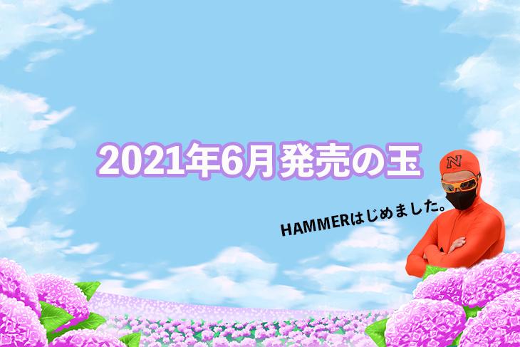 2021年6月 ボウリングボール